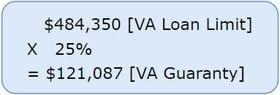 2019 VA Guaranty