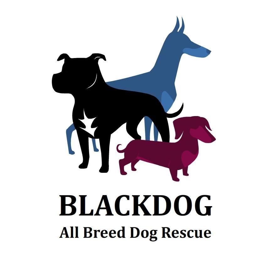 BLACKDOG All Breed Dog Rescue
